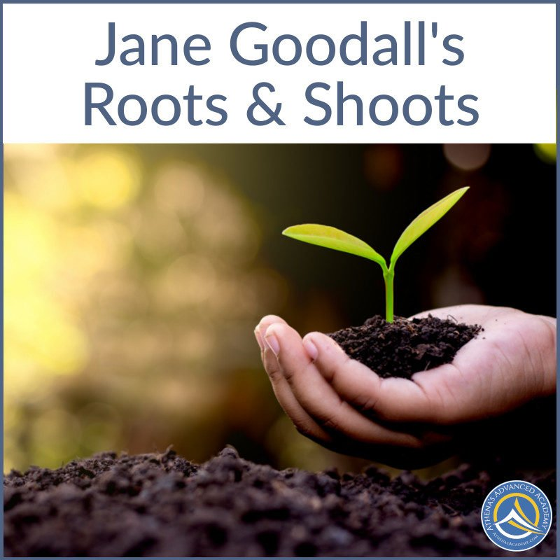 Jane Goodall's Roots and Shoots