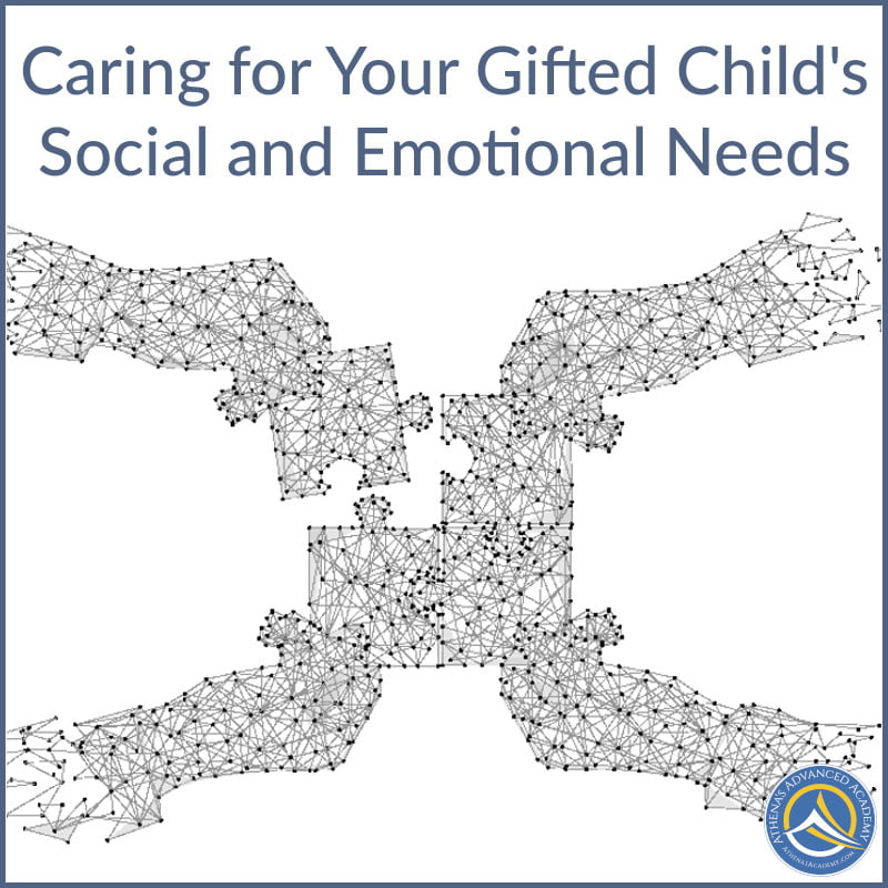 Caring For Your Gifted Child's Social And Emotional Needs