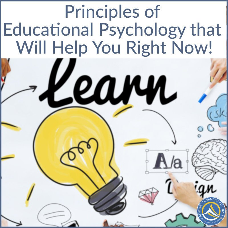 Principles of Educational Psychology that Will Help you Right Now